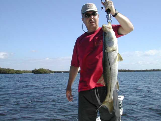 Go fish charters tarpon fishing snook fishing fishing for Fishing charters englewood fl